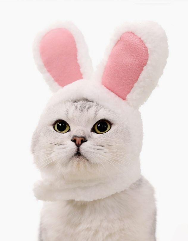 Шапочка для кота у вигляді  зайця | 237865-01-XX - A-SHOP