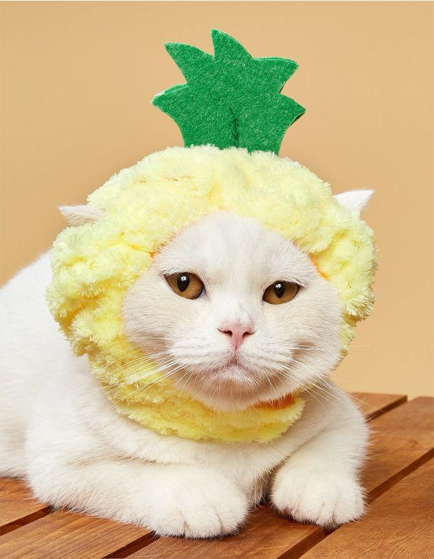 Пов'язка для котика у вигляді ананаса | 248671-19-XX - A-SHOP