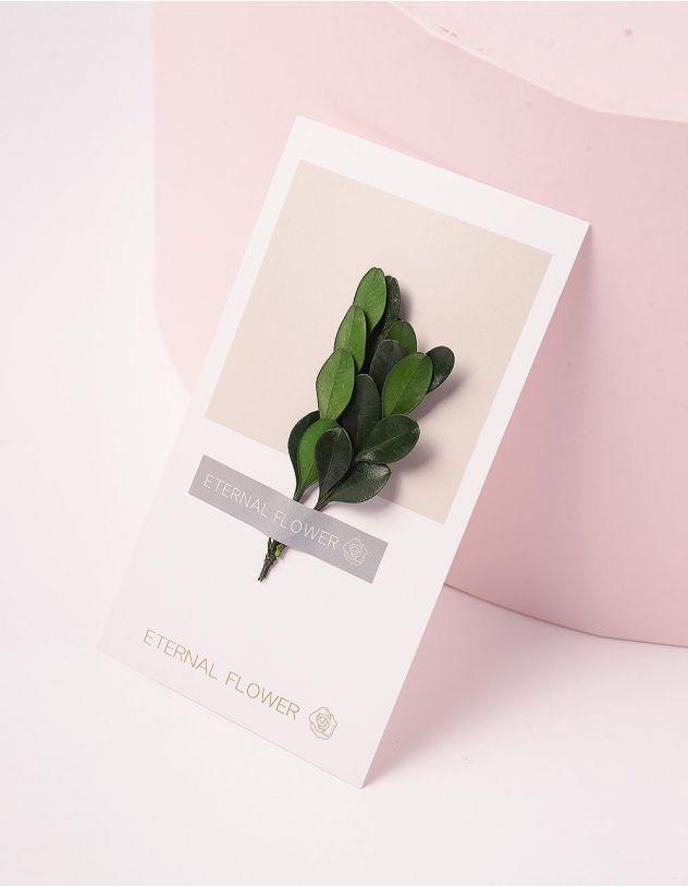 Листівка з листям | 244326-20-XX - A-SHOP