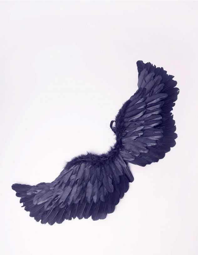 Аксесуар до одягу карнавальний у вигляді крил   243299-02-XX - A-SHOP